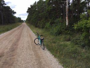 Cykeln på bilden markerar ungefärligt position för var i skogen, bredvid vägen, vattenverket kommer att placeras. Foto: Lennart Cantell